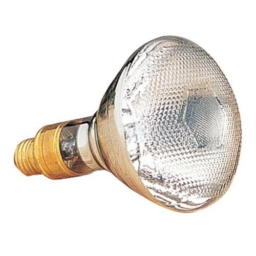 160 Watt Mercury Bulb