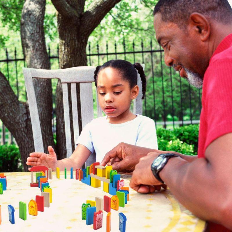 Backyard Animals Domino Adventure