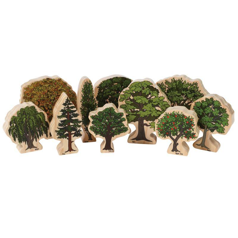Trees Of All Seasons