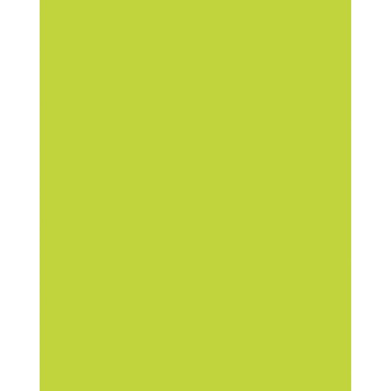 Poster Board Neon Lime 22x28 25/ct