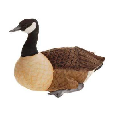 Goose, Canada 25.5''l