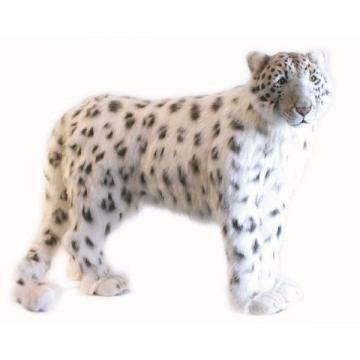 Snowleopard Standing49''l