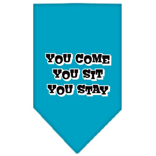 You Come, You Sit, You Stay Screen Print Bandana Turquoise Small