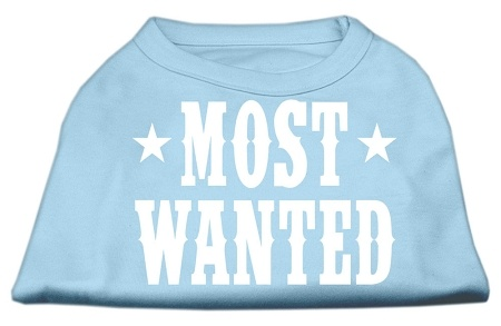 Most Wanted Screen Print Shirt Baby Blue Med