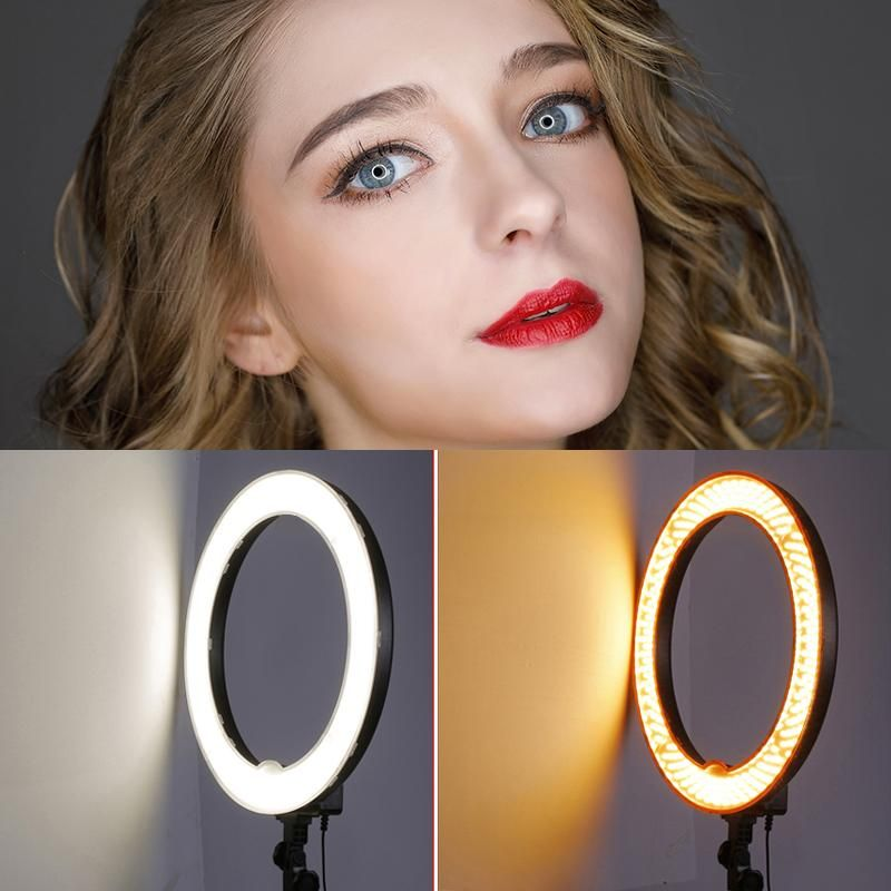 Neewer 18-inch Ring Light, 55w Dimmable 5500k Light With 240 Leds Color Filter, Soft Tube And Carrying Bag